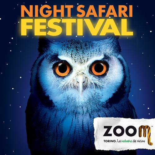 Night Safari Festival